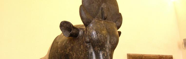 taureau Apis