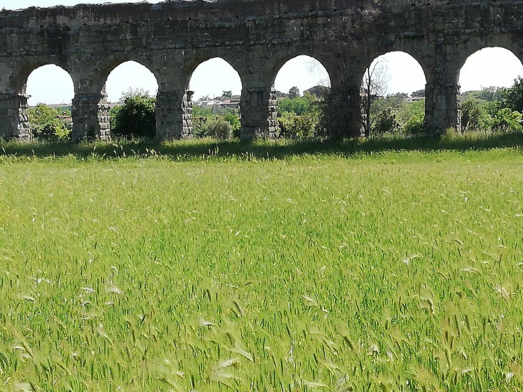 visiter le parc des Aqueducs